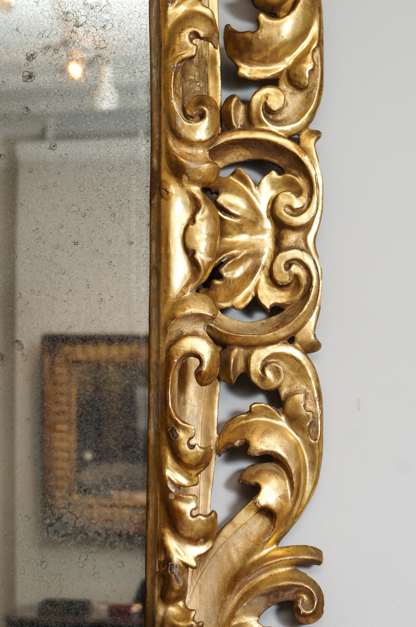 Florentine 19th Century Gilt Wood Mirror