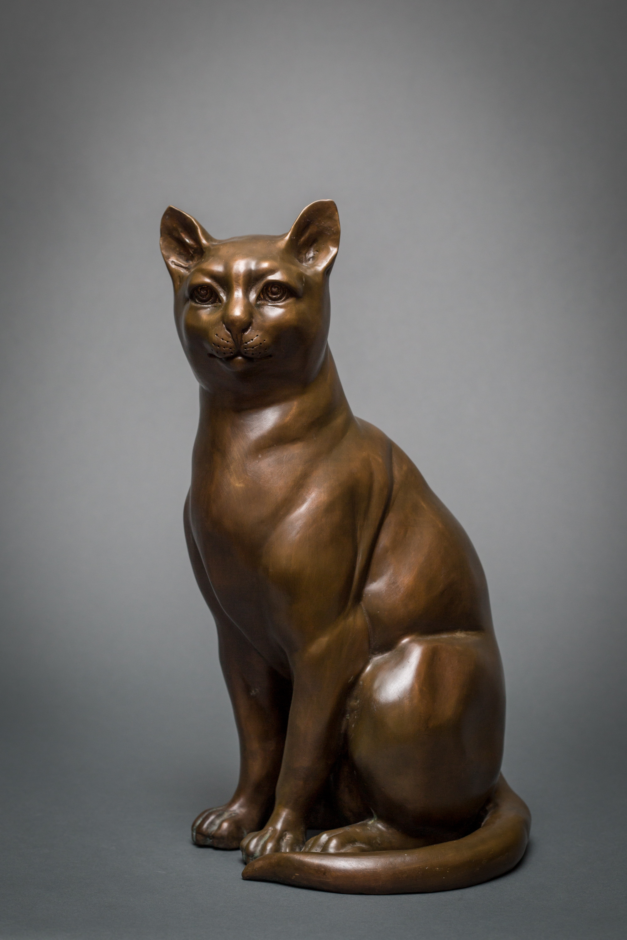 French Bronze Cat