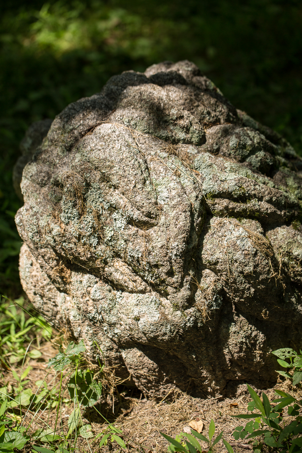 japanese sculpture, japanese antique, japanese antique sculpture. garden sculpture, japanese garden sculpture, japanese garden, lion sculpture, antique lion sculpture, stone lion, japanese lion